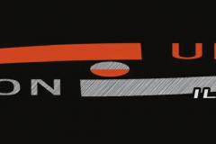Logo VU ILE VERTE-1